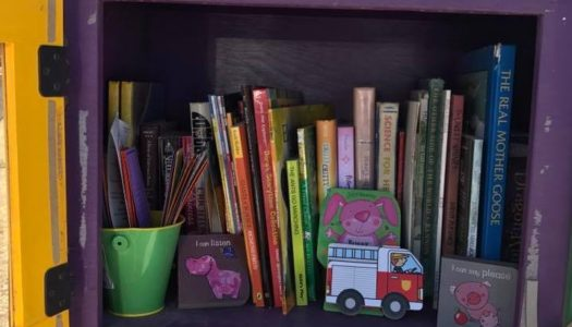 Little Free Libraries Project